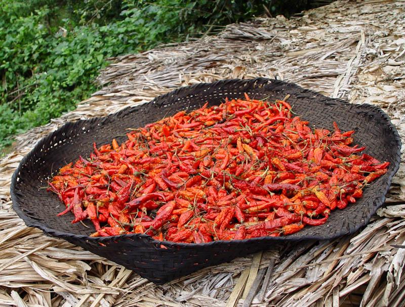 Chillies, dried ໝາກເຜັດແຫ້ງ mak pet haeng
