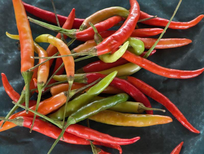 Chilli peppers, large ໝາກເຜັດໃຫ່ຍ mak pet nyai