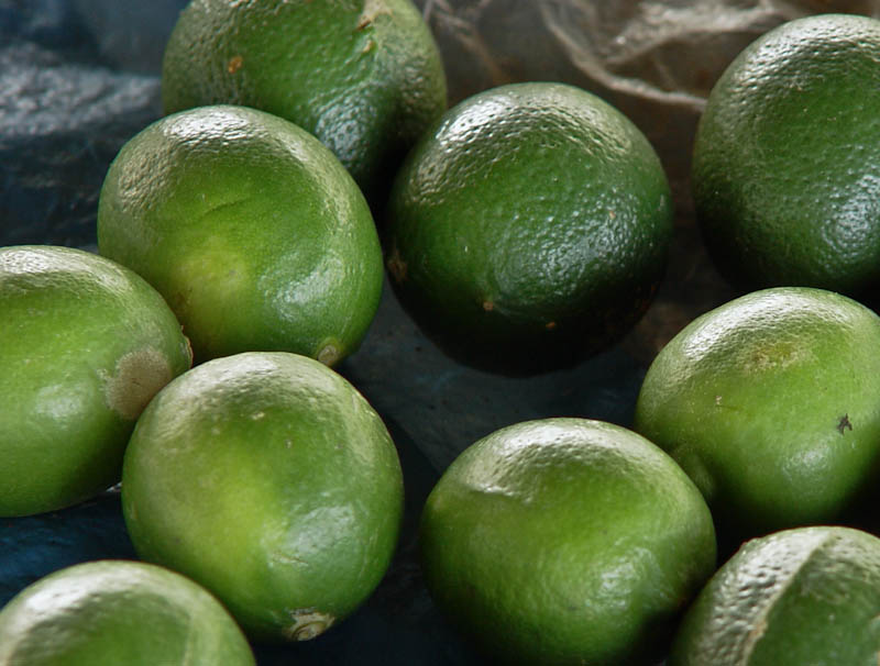 Limes ໝາກນາວ mak naow