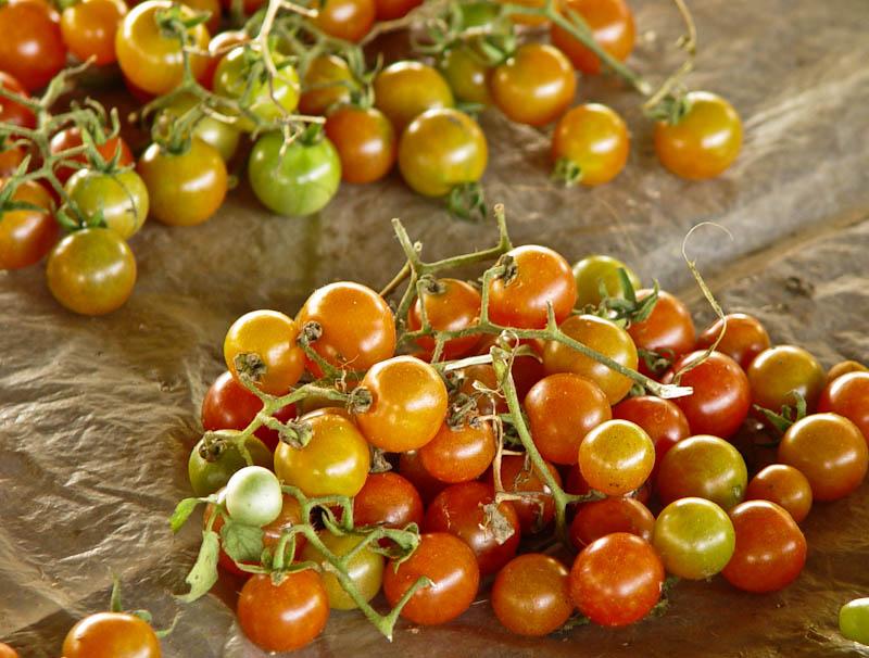 Tomato ໝາກເລັ່ນ mak len