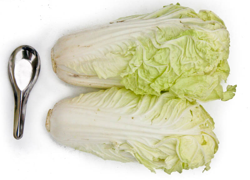 Chinese cabbage, celery cabbage, Napa cabbage ຜັກກາດຂາວ ຫຼື ຜັກກາດຂຽວ pak kaat kao, pak kaat kiao