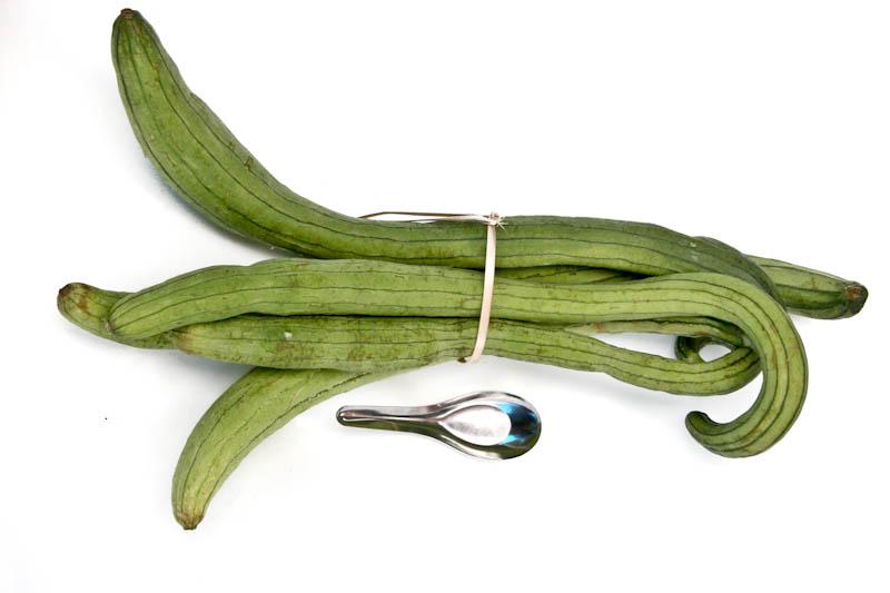 Snake gourd ໝາກນອຍຍາວ mak noi nyaow