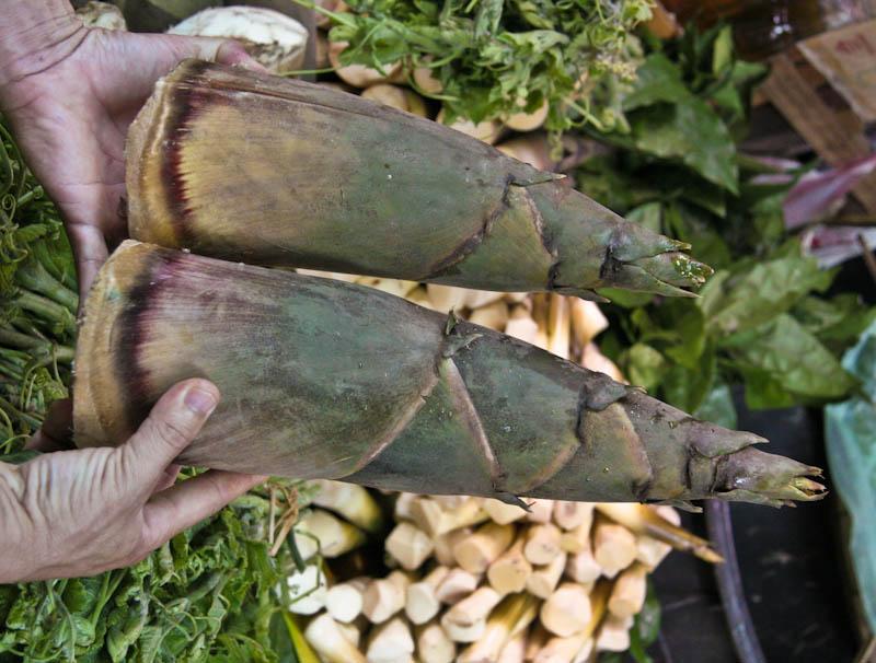 Bamboo shoots, large, sweet ໝໍ່ໄມ້ຫວານ naw mai waan