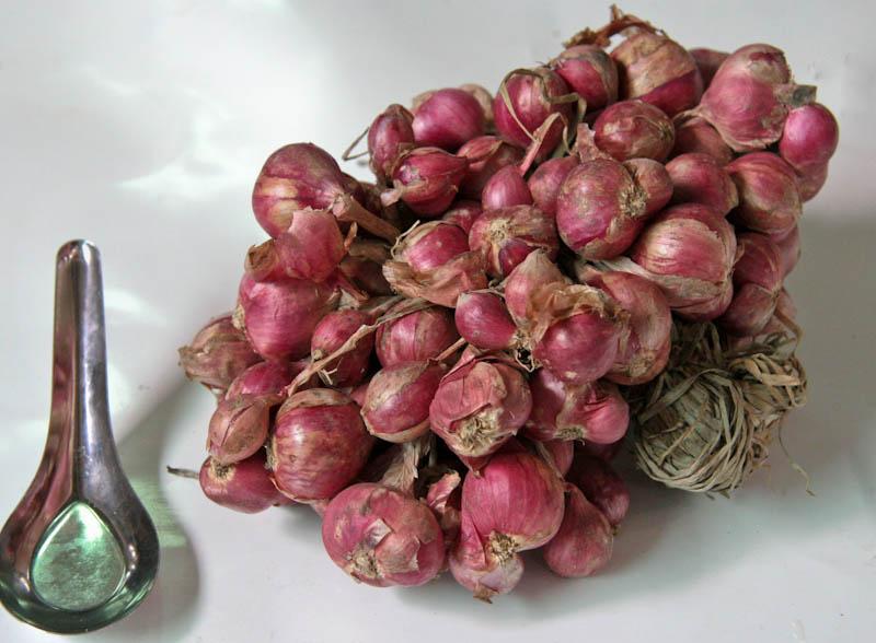 Shallots, red ຫົວຜັກບົວແດງ pak boua daeng